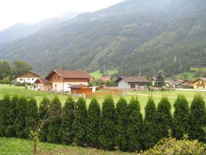 Selo Flattach