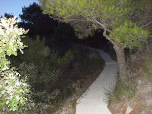 Staza prema stijenama