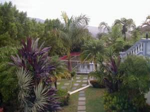 Viseći vrtovi
