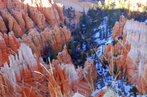 Bryce Canyon-Hoodoos Snow